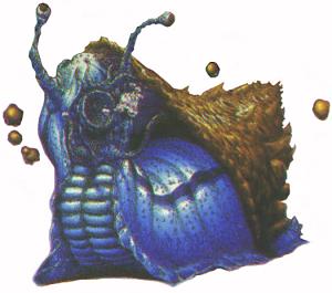 Mollusks - Figure08b