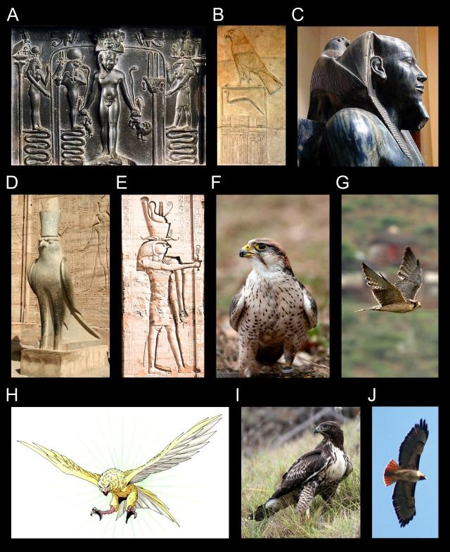 Persona - Figure07 - Horus