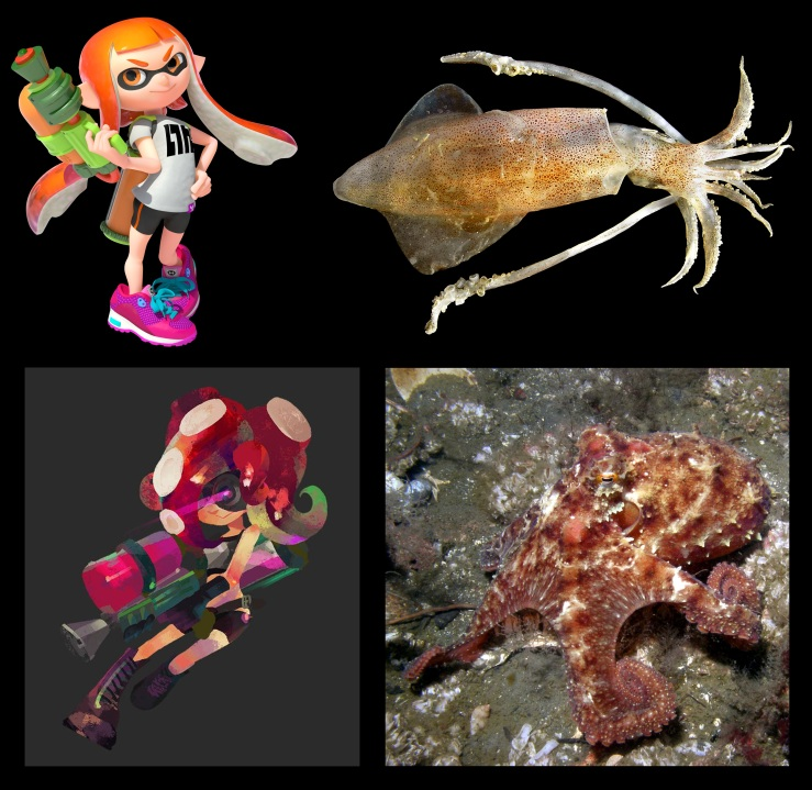 Splatoon - Fig 1