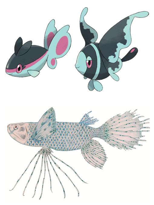 The Ichthyological Diversity Of Pokémon Journal Of Geek Studies